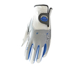 Zoom Tour Glove